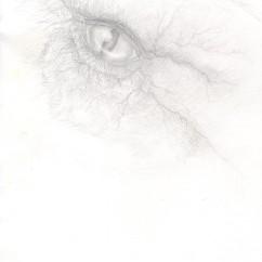 dragoneye1