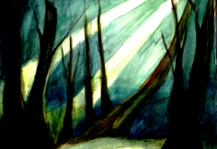 Forest (watercolour)