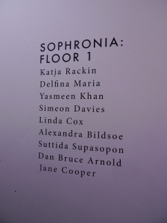 Sophronia - my MA show